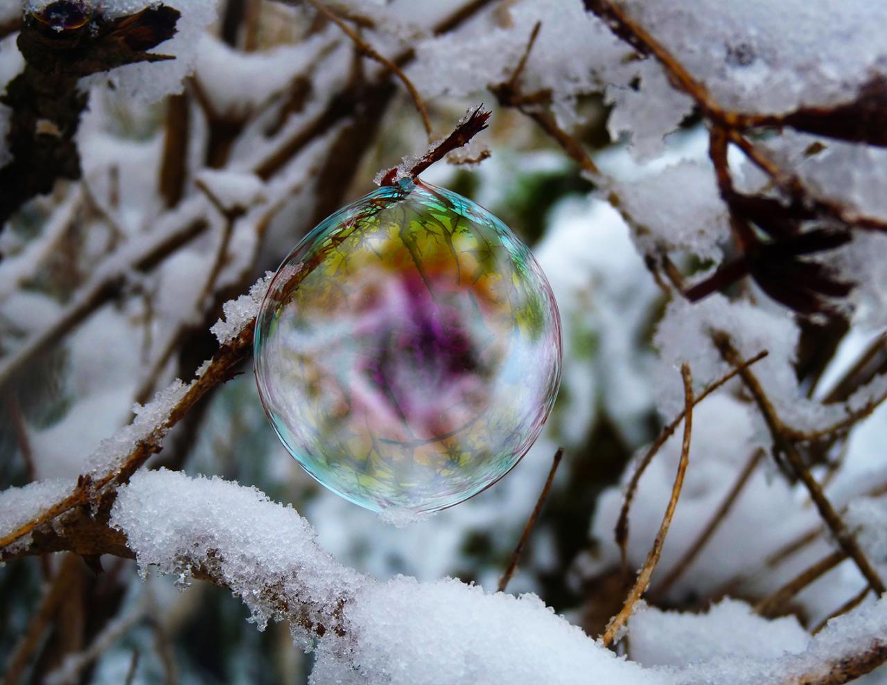 bulle de neige